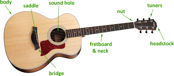 parts-of-the-guitar